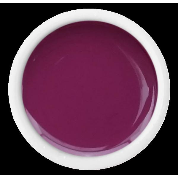 Color Gel - 207